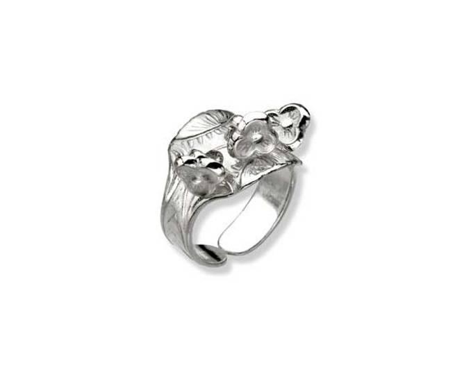 Bilde av Ring, hvit